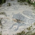 MINORI_Villa Romana_mosaico